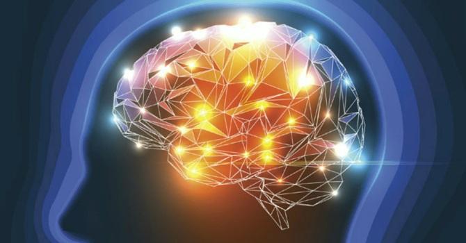 psilocybine hersenen